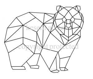 דוב גאומטרי